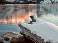 Sunrise, Twin Lakes, Eastern Sierra Nevada, California