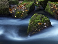 Mossy Boulders And Water - Bird Rock Falls
