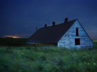 Hoghouse, Fireflies, And Distant Storm