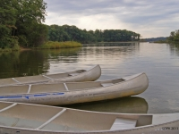Rowboats At Quiet Waters Park