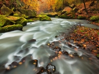 River In Autumn Colors