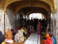 Prayers In The Golden Temple, India