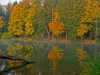 Autumn At Peters Lake