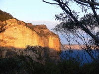 A Cliff Face Near The Golden Stairway At Katoomba, Nsw