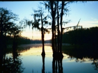 Sunrise Over Caddo Lake