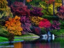Brillant Fall Colors!