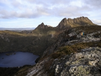 Cradle Mountain And Dove Lake View.
