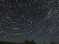 Star Trails In Algonquin Park