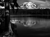 Mt Adams From Takhlakh Lake