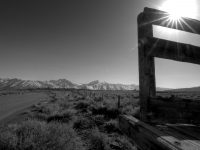 Old Cattle Chute (black And White)