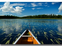 Island River Fishing In The Boundary Waters