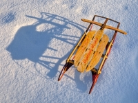 Snowsled And Shadow