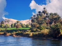 Along The River Nile