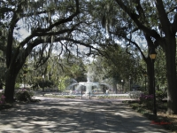 Savannah Fountain Beauty