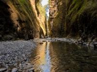 Symmetry Of The Gorge