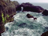 A Churning Cove On The Oregon Coast Trail