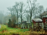 Foggy Farmside Road