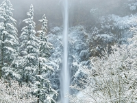 Wintry Multnomah Falls