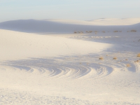 Wind Tracks At White Sands
