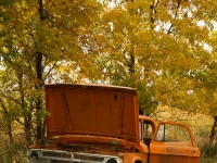 Old Dodge Truck