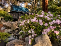 Japanese Tea House, Descanso Gardens, La Canada