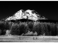 Mt. Rainier By Moonlight
