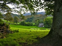 Farmhouse, Lake District