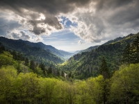 Smoky Mountains Landscape Photography - Spring At Mortons Overlook