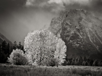 Grand Teton - Clearing Storm