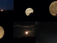 Supermoon Collage