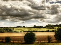 Hampshire Countryside