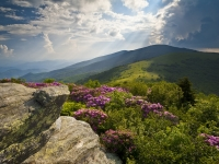 Roan Mountain From Appalachian Trail Near Jane's Bald
