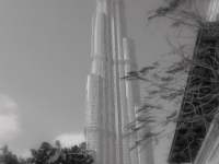 The Burj, Tallest Building In The World