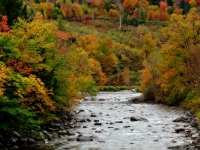 Waits River In The Fall