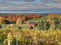 Fall On Old Mission Peninsula