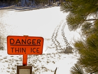 """danger"", Thin Ice"