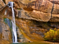 Calf Creek Falls And Photographer