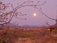 Dawn Near Lake Manyara