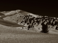 White Mountians Moonscape