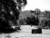 Gold Country Windmill