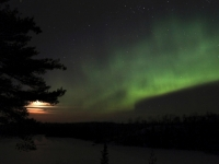 Northern Lights Over Northern Mn