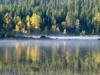 Morning Mist On Lake Wenatchee
