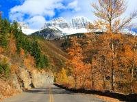Fall In The High Country