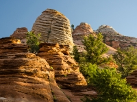 Layered Rock, Canyon Overlook Trail, Zion