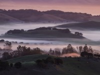The Day Begins In The Petaluma Hills