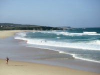 Jogging On Narooma Beach