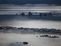 Moonlit Ice Fog On Mono Lake