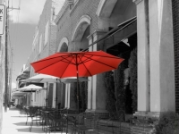 Red Umbrella 9902