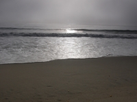 Fog At Laguna Beach