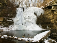 Frozen Falls And Ducks On The Pond